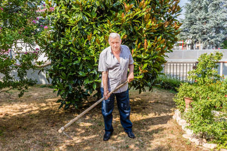 hoeing: elderly octogenarian male man is hoeing the garden