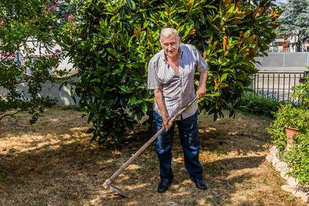 octogenarian: elderly octogenarian male man is hoeing the garden