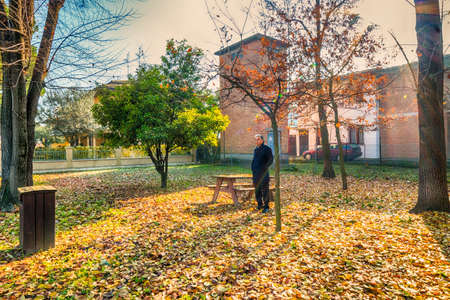 blue grey coat: Middle-aged man with gray hair at the public gardens dressing a black coat and a light blue shirt