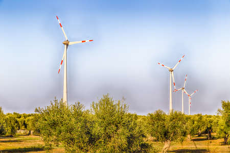 windfarms: wind turbines  in cultivation of olive trees in Apulia in Southern Italy Stock Photo