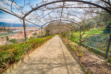 tunnel view: View from romantic bare wisteria tunnel in the Italian-style Bardini gardens in Florence, Italy