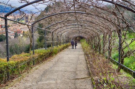 intertwined: couple in love walking hand in hand under romantic gallery whose vault of intertwined bare branches of wisteria allows a breathtaking view of Florence