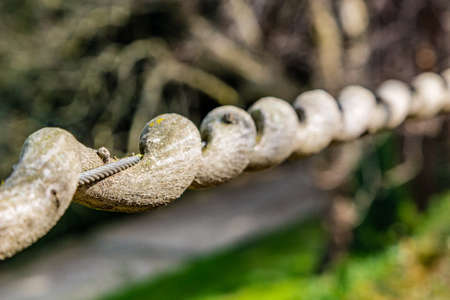 strangulation: detail of branch of wisteria twisted around a steel cable Stock Photo
