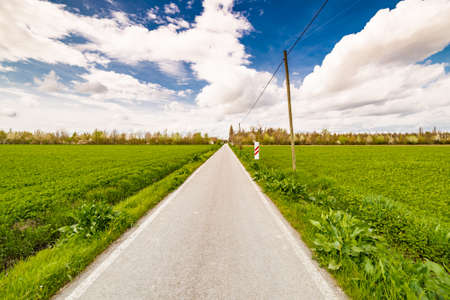the po valley: country road running towards the horizon through green fields of the Po Valley in Romagna, Italy