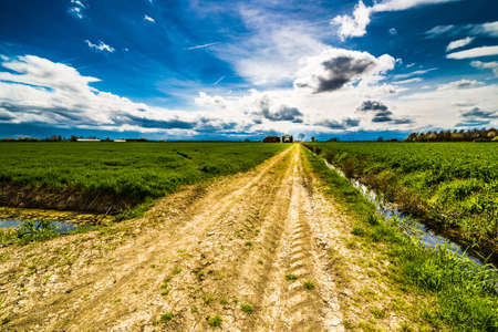 the po valley: dirt country road running towards the horizon through green fields of the Po Valley in Romagna, Italy Stock Photo