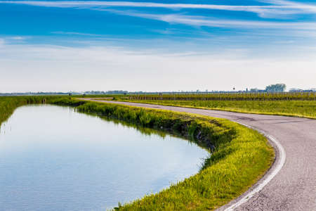 irrigation field: irrigation canal of the fields flowing in the countryside of Emilia Romagna