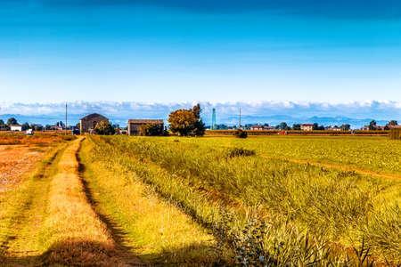 die friedliche Stille der Felder in der Region Emilia Romagna in der unteren Po-Tal in Italien, während die Hügel sind der Hintergrund Standard-Bild