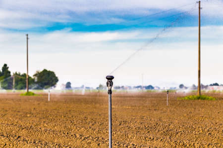 irrigating: irrigation of cultivated fields with rotating sprayer Stock Photo