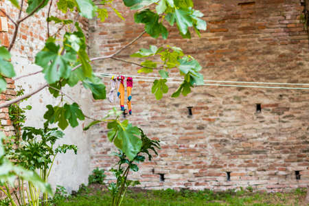 hung: Socks hung out to dry on a rope in the courtyard surrounded by ancient walls and plants in a medieval village in Italy