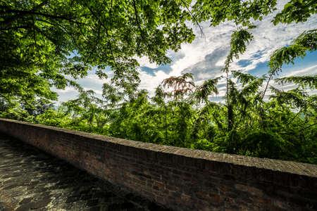 parapet: stone parapet in the green trees