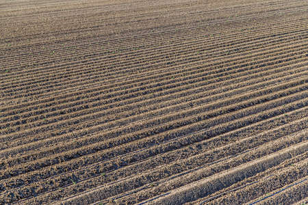 furrows: the furrows of a plowed field