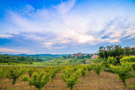 adverts: panorama of cultivated fields on the hills of Emilia Romagna dominated by Malatestian Castle,  medieval fortress dating back to 1200 AD, of Longiano, Italy