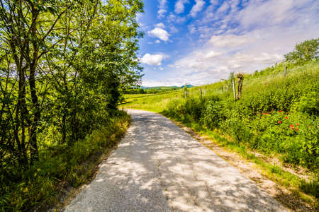 romagna: dirt road on the hills of Tuscany and Romagna Apennines Stock Photo