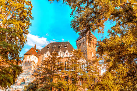 hungary: Castle in Budapest in Hungary Stock Photo