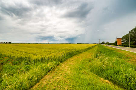 bucolic: bucolic landscape of the countryside of Romagna in Italy Stock Photo