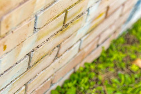 columns of hard working and busy ants moving in opposite directions on the grooves of a painted brick wall Stock Photo