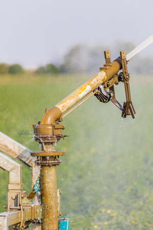irrigating: details of sprinkler irrigating fields Stock Photo