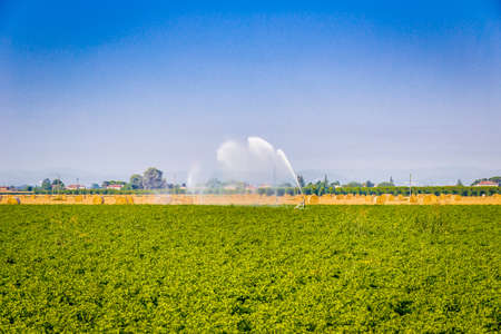 aspects: irrigation of cultivated green fields near bales of hay, various aspects of agriculture in summer