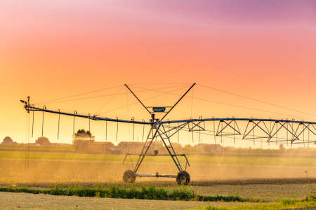 pivot: pivot sprinkler system watering newly sown crops