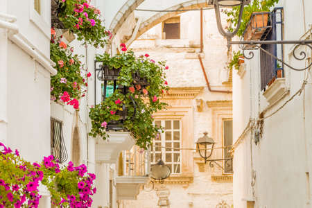 hanging flowers: locorotondo in Apulia, Italy, hanging flowers of whitewashed houses on narrow streets