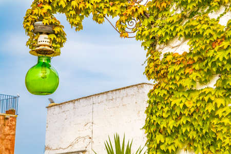street lamp with glass carboy wrapped in ivy
