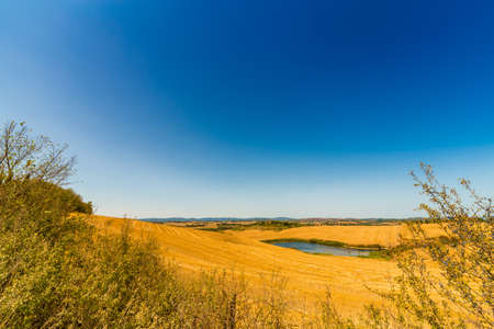 yellow weeds on lunar landscape of Senese Clays, region of badlands under the sun of Tuscany in Italy Stock Photo