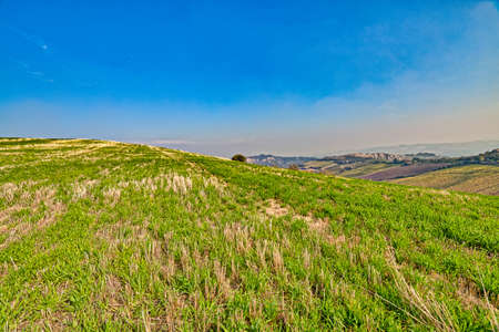 landscape of badlands and green hill with trees in autumn sunny day Stock Photo