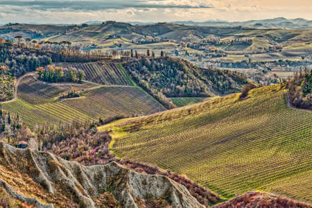 vineyards and cultivated fields in badlands in Italian countryside Stock Photo