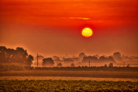 reddish sunrise on fields in Italian countryside