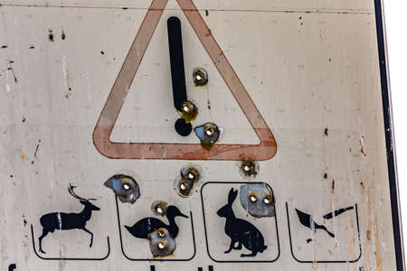 Bullet holes on warning road sign for stray fauna