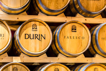 BOLOGNA, ITALY - OCTOBER 2, 2018: lights are enlightening Wine Barrels at FICO EATALY WORLD, the largest agri-food park in the world Editorial
