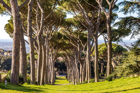 CASTEL GANDOLFO (ROME), ITALY - JANUARY 3, 2019: sun light is enlightening gardens of Pontificas Villas in Castel Gandolfo