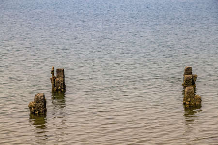 poles emerging from the water in brackish lagoon 스톡 콘텐츠 - 124465578
