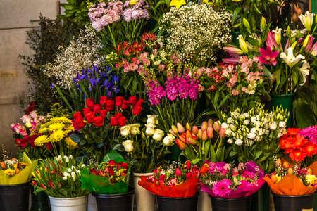 closeup of fresh colorful flowers Banco de Imagens