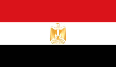 flag of egypt: Egypt flag