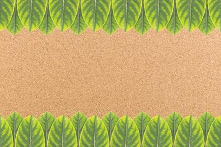 Jack fruit leaves frame on cork board background  photo