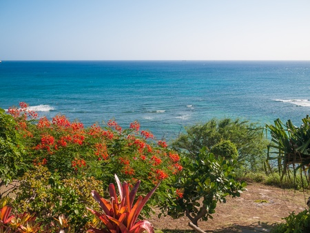 OAHU, HAWAII - FEB 1   view of Pacific ocean from Diamond head road  photo