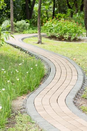 Stone pathway into garden  photo