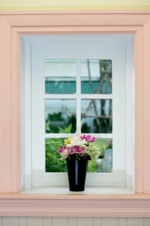 flower on window photo