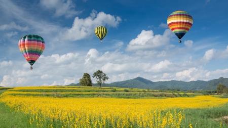 Globo de aire caliente sobre campos de flores amarillas contra el cielo azul Foto de archivo