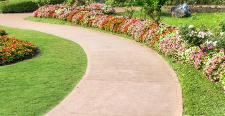 Cement pathway in flowers garden photo