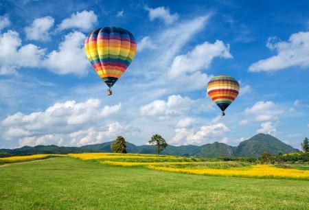Hete luchtballon over de gele bloem veld met berg en blauwe hemel achtergrond Stockfoto