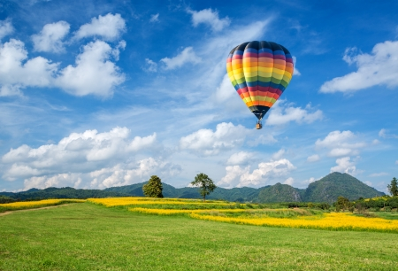Hot air balloon over the yellow flower field with mountain and blue sky background photo