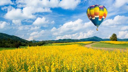 Hot air balloon over Yellow flower fields against blue sky