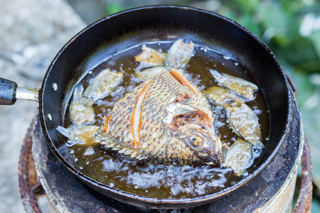fried fish photo
