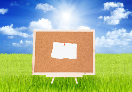 Achieve note on cork board with green grass and blue sky background photo