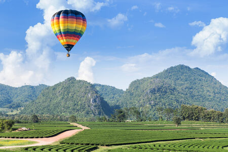 Hot air balloon over the mountain and tea plantation Stock Photo