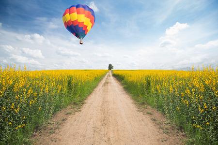 Hot air balloon over yellow flower fields photo