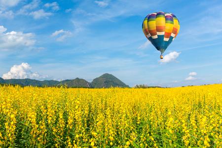 Globo de aire caliente sobre campos de flores amarillas contra el cielo azul