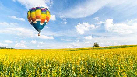 aire puro: Globo de aire caliente sobre campos de flores amarillas contra el cielo azul Foto de archivo